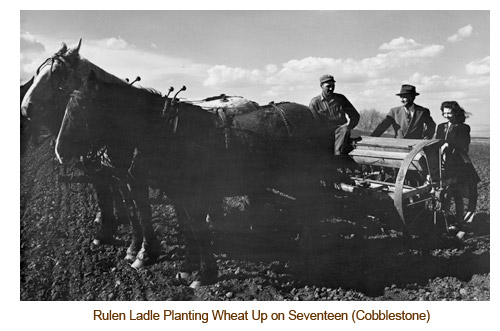 Rulen Ladle Drilling Wheat up on Seventeen